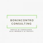 BONINCONTRO CONSULTING
